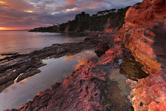 Red (stevoarnold) Tags: red reflection water pool sunrise australia cliffs nsw newsouthwales eden southcoast mudstone sapphirecoast devonianperiod