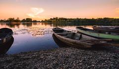 Fermasee (kevingomes1) Tags: lake see holz bote wooden boat sunset stones steine sonnenuntergang outdoor exploring landscape landschaft summer sommer sunny sonnig fermasee rheinstetten germany deutschland badenwrttemberg
