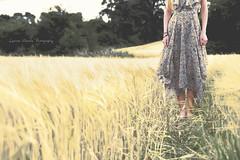 Glorious Irish fields (elizabethanneduffy) Tags: field nature ireland body portrait people outdoors summer dress feet legs sky trees golden