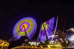 DSC_0599 (Frankie Tseng ()) Tags: amusementpark park festival festivals ferriswheel coffeemug carousel adventure blur pan rollercoaster scary speed pirateship spaceship bw bwphotography height kids kidspark