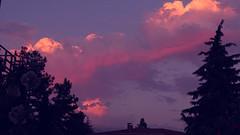XX1th (birkancaghan) Tags: purple sony hx400v cloud pink blue pine purpura nubes pinus zeiss sky outdoor riotofcolors sunset carlzeiss