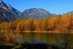 il fiume ADIGE a TRENTO in autunno 2015 (marvin 345) Tags: adige fiumeadige trentino trento river italy italia autunno