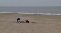 IMG_1061 (EadaoinFlynn) Tags: curracloe beach sea ireland irishsea wexford