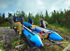 Further Upstream (Fish as art) Tags: expedition travel rivers research zoology forest wilderness canada northern northwestterritories
