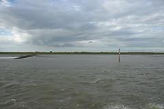Rilland mud flats DST_7992 (larry_antwerp) Tags: rilland nederland netherlands schelde