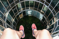 Glass well (7ordek) Tags: cool selfie selfportrait glass windows mirror mirrosedge edge window exploration exploring explorers explorer empty emptiness rotten rooftop rooftopping roofs roof trespassing thrill adrenaline urbex ue urbanexploration urbanexporation infiltration opuszczone abandoned d90 derelict decay disused decayed forgotten forbidden roofer circle geometric geometry hidden hotel lost zapomniane extreme explore climbing climb beyond nikon neglected nikkor