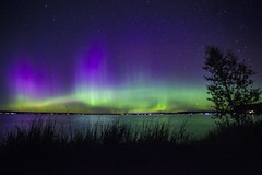 Expect the unexpected (wiltsepix) Tags: northern lights higgins lake south state park 1740mm michigan