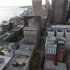 #downtown #Seattle &  #ferriswheel from #SmithTower #observationdeck (Heath & the B.L.T. boys) Tags: instagram seattle pugetsound architecture