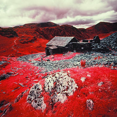 Honister Dubs Bothy (Mark Rowell) Tags: infrared ir eir aerochrome honister dubsbothy haystacks cumbria lakedistrict uk 6x6 120 mediumformat expired hasselblad 903 swc film