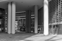 I I I (Luca Vegetti Photography) Tags: milan milano city architecture architectureporn square place column pillar blackandwhite nikon d600