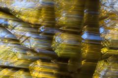 ASPEN DANCE (Deborah Hughes Photography) Tags: art abstract trees aspens autumn icm intentionalcameramovement utah abajo mountains