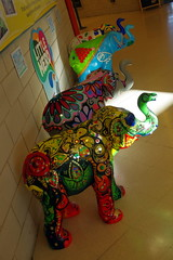 22.9.16 Elephants in Sheffield 099 (donald judge) Tags: sheffield herd of elephants chldrens hospital charity