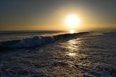 The Cali surf at sunset (megmcabee) Tags: gold usa vacation sun ocean pacific sea beach sunset california venice