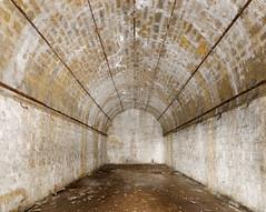 Fort du Mont Bart (ComputerHotline) Tags: old lightpainting france ruins fort fortifications franchecomt fra vieux abandonned ruines abandonn bavans fortdumontbart