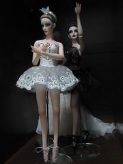Swan Lake (Dkell12) Tags: show lake black swan dolls bjd write resin superdoll