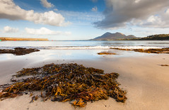 Ireland (John_Kennan) Tags: ireland sky cloud mountain seaweed west beach water landscape waves wave