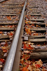 More Tracks (Meggiemae67) Tags: autumn vacation lake color fall wisconsin train devils tracks devilslake