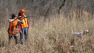 Private Alabama Quail Hunting - Davis Quail 12