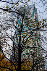 Cabot tower, Autumn (harold.whatever) Tags: leica london tower wharf docklands canary cabot x2