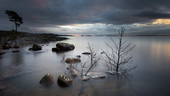 Lake Vnern from Bergviksudde (- David Olsson -) Tags: longexposure november trees sunset lake seascape n