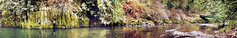 Tualatin River (CleanCletus) Tags: panorama oregon river tualatinriver