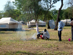 The Resilience and Dignity of Refugees in South Sudan (UNHCR) Tags: africa camp food man animals southsudan refugees livestock unhcr refugeecamp sudaneserefugees unrefugeeagency unitednationsrefugeeagency gendrassarefugeecamp psfrmission