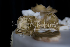 Gold fondant Flowers (HarleyK) Tags: gold chocolate anniversary weddingcake course cumpleaos hdr porrio infantiles airbrush oro piatas regalos fondant 50anniversary weddingplanner goldflower sugarflower elegantweddingcake 50anniversarycake goldweddingcake tartasenespaa cakelum karenlum tartasenporrio tartas3d pedazodeazucar tartasdecoradasengalicia