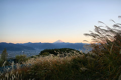 IMG_0009 (youkaine) Tags: november autumn sunset red orange mountain yellow japan forest river waterfall scenery fuji hiking autumncolors foliage mountfuji 日本 onsen 紅葉 秋 山 富士山 yamanashi 温泉 景色 11月 川 ハイキング 山梨 日没 nishizawakeikoku 葉っぱ 山梨県