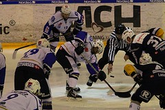 Kamp (Benny Hnersen) Tags: blue ice hockey is referee herning icehockey skate fox match puck eis spiel kamp schlittschuh ishockey dommer skjte skjtehal