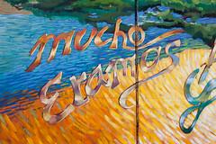 Barrio Anita Mural Project (bo mackison) Tags: arizona southwest art mural tucson publicart barrios tucsonarizona ussouthwest barrioanita christmasinthebarrio barrioanitamuralproject