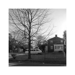 Gartenparker / Church Van (bartholmy) Tags: house bus tree fence garden virginia parking haus richmond va van chainlinkfence residence zaun garten baum vorgarten eastend parken churchhill wohnhaus maschendrahtzaun