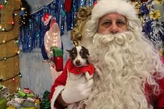 IMG_0181 (PMC Fresno) Tags: santa pet photos center medical spa pmc