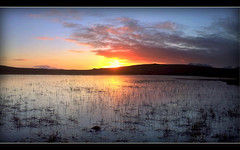 Sunset Panorama (Inverness-Andrew) Tags: uk winter sunset water reeds scotland highlands loch