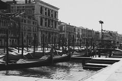 Venice (fgazioli) Tags: venice veneza venezia italia italy europe eur eurotrip bestplacestogo travel pb wb pretoebranco blackwhite blackandwhite outdoor cityphotography city love
