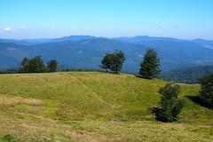 mramarosi tj / scenery (debreczeniemoke) Tags: nyr summer hegyek mountains mramaros maramure gutinhegysg gutinmountains tjkp landscape olympusem5