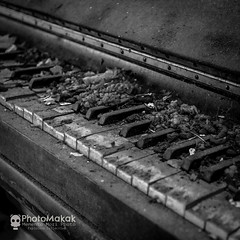 Playing  for yourself (photoMakak) Tags: abandoned canon decay piano urbanexploration mementomori derelict canonef1740mmf4lusm ruraldecay 6d urbex abandonn ruralexploration rurex canon6d ruralexplorer photomakak mementomoriphoto