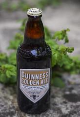 Guinness Golden Ale (y.mihov, Big Thanks for more than a million views) Tags: guinness golden ale beer bottle bierbirrbeerehpivogaragardoapivabeerbierbiracervesajijpijiulbeer cervisiaalusbbiyabirbiyar jadabjobiapiwocervejasirbisacervezabeerabiiru sonyalpha pint prime pivo