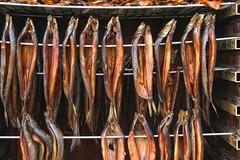 Kippered (robin denton) Tags: kippers seafood fish smokedherring herring hdr oven smokingoven food