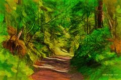 Forest Path (Kalev Vask.) Tags: digital kalevvask postproccessed topaz impression dap estonia photomanipulation photoart sharingart nature forest uljaste trail