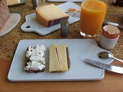 Kse (vom SuperBioMarkt) auf Vollkornbrot (multipel_bleiben) Tags: essen vollkorn frhstck bio