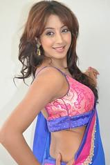 South Actress SANJJANAA PHOTOS SET-1 (23)