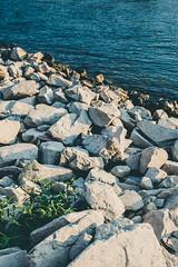 White Rocks (poborny) Tags: germany deutschland canon eos 750d rhine whine water sunset blue rock rocks white green mainz