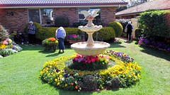 Toowoomba Garden Tour - Carnival of Flowers (jlau_lau) Tags: flowers flower garden spring festival nature     hanami    australia toowoomba carnival city country rural