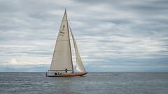 P1010650 (Terje G) Tags: trebåt woodboat båt boat risør norge norway sea sjø holidays ferie ship lumix gx8 m43 lumix14140mm panasonic sail seil sailboat seilbåt mast sailing seiling