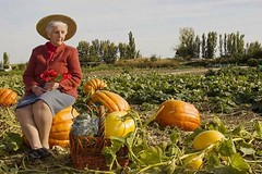 MI QUERIDSIMA Y ENCANTADORA ABUELA (93 aos) (Susana M.L.) Tags: abuela grandma calabazas naturaleza nature airelibre pumpkin campo retrato
