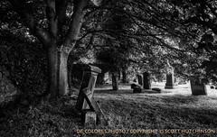 Hide the Myst'ries of Life (deColoresPhoto) Tags: decoloresphoto nikon d810 scotland uk melrose abbey melroseabbey scottishborders ruins grave gravestones tree captureonepro