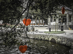 Stavanger (Liv Annette) Tags: hearts stavanger city park norge norway red canon7d 150 anniversary beautiful
