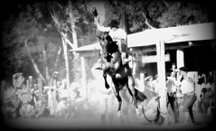 Rinconada (Eduardo Amorim) Tags: caballo horse cheval cavallo pferd cavalos caballos horses chevaux cavalli pferde gacho gachos gaucho gauchos campeiro campeiros gineteada jineteada santavitriadopalmar riograndedosul brsil brasil sudamrica sdamerika suramrica amricadosul southamerica amriquedusud americameridionale amricadelsur americadelsud cavalo         hst hest hevonen  brazil eduardoamorim