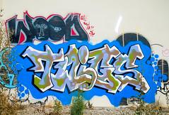 (gordon gekkoh) Tags: twigs wood oakland eastbay graffiti