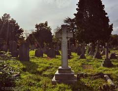 Copyright Khandie Khisses (Khandie Khisses) Tags: grave graveyard parish cross graves burial pinner
